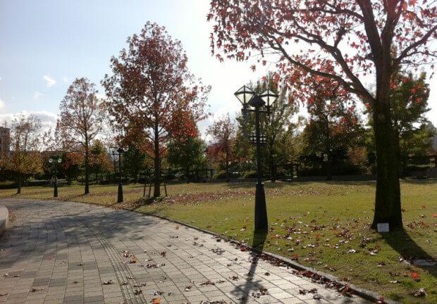 福岡市博物館の前の公園