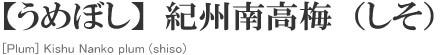 【うめぼし】紀州南高梅(しそ)[Plum] Kishu Nanko plum (shiso)