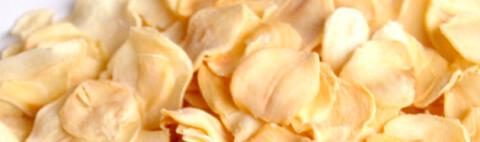 九州産乾燥にんにくチップ