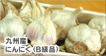 九州産 にんにく (B級品)