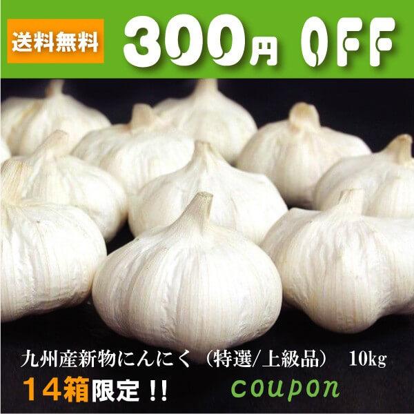 美味しい食卓通販 九州産新物にんにく (特選~上級品) 10kg 300円OFFクーポン!