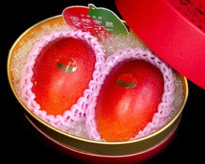 化粧箱 宮崎産完熟マンゴー 2玉