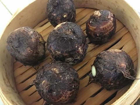 里芋を30分程度蒸す