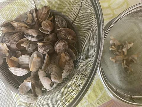 あさりの口が開いたら、貝とスープに分ける