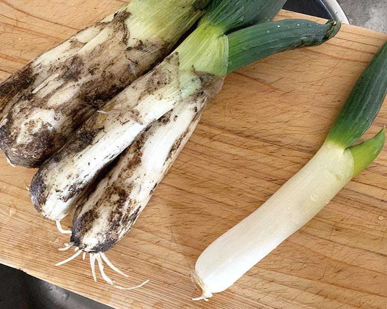 下仁田ネギの外側の乾いた皮と根の部分を取り除く