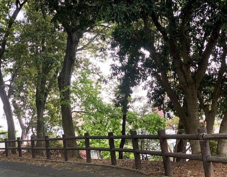 紅葉山公園へと続く道