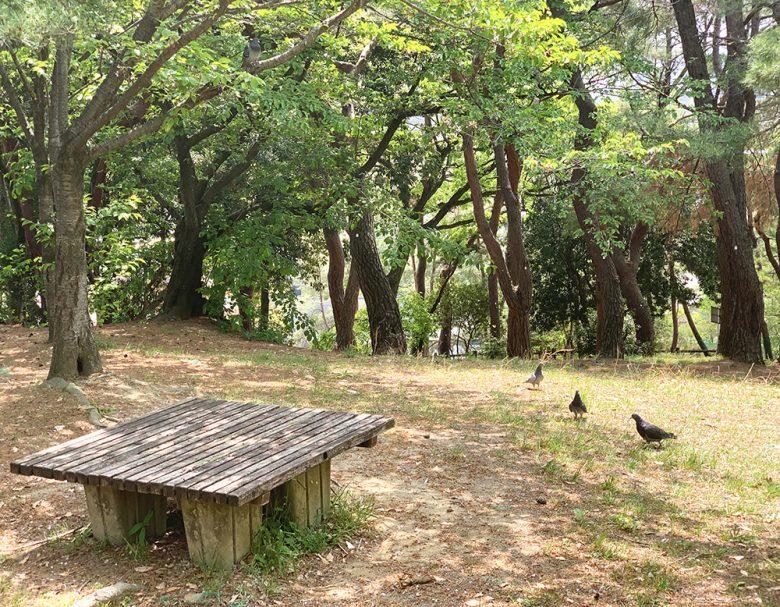 紅葉山公園(紅葉八幡宮)