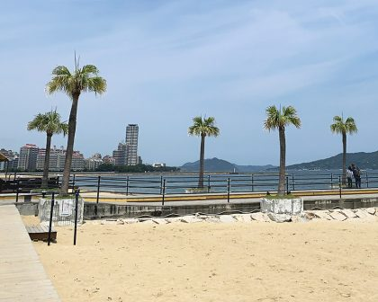 シーサイドももち海浜公園 3