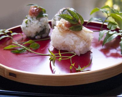 たけのこ・つわぶきの寿司結び