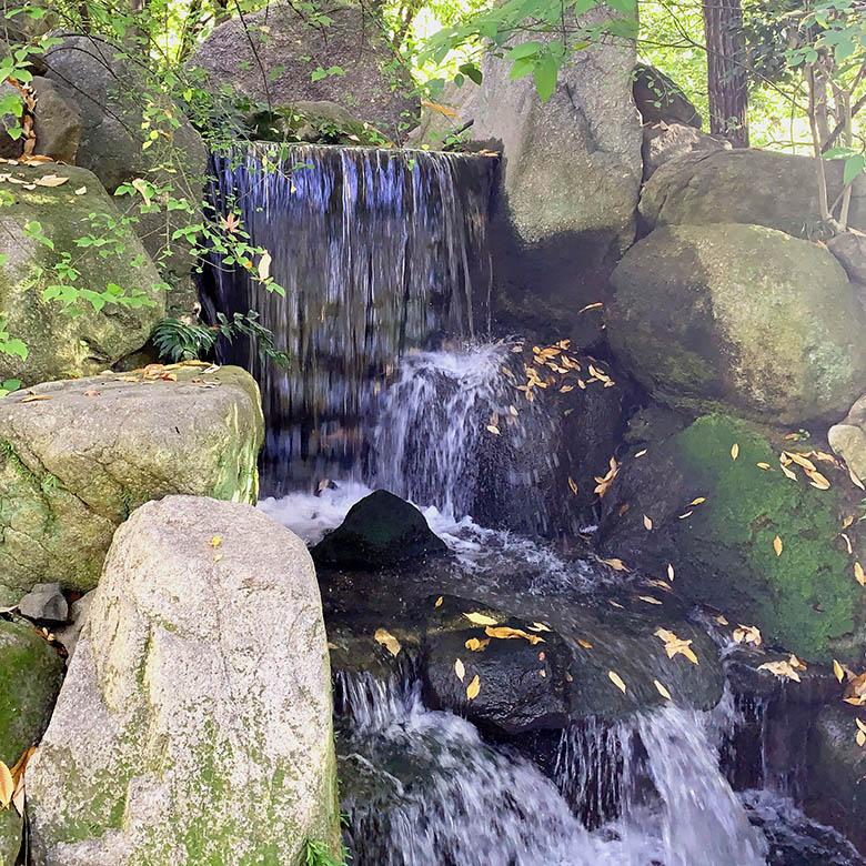 楽水園 自然石の滝口